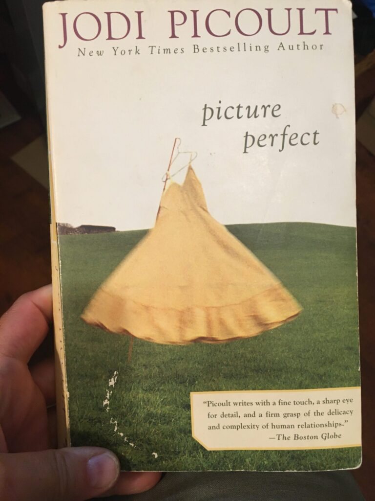 Picture Perfect by Jodi Picoult